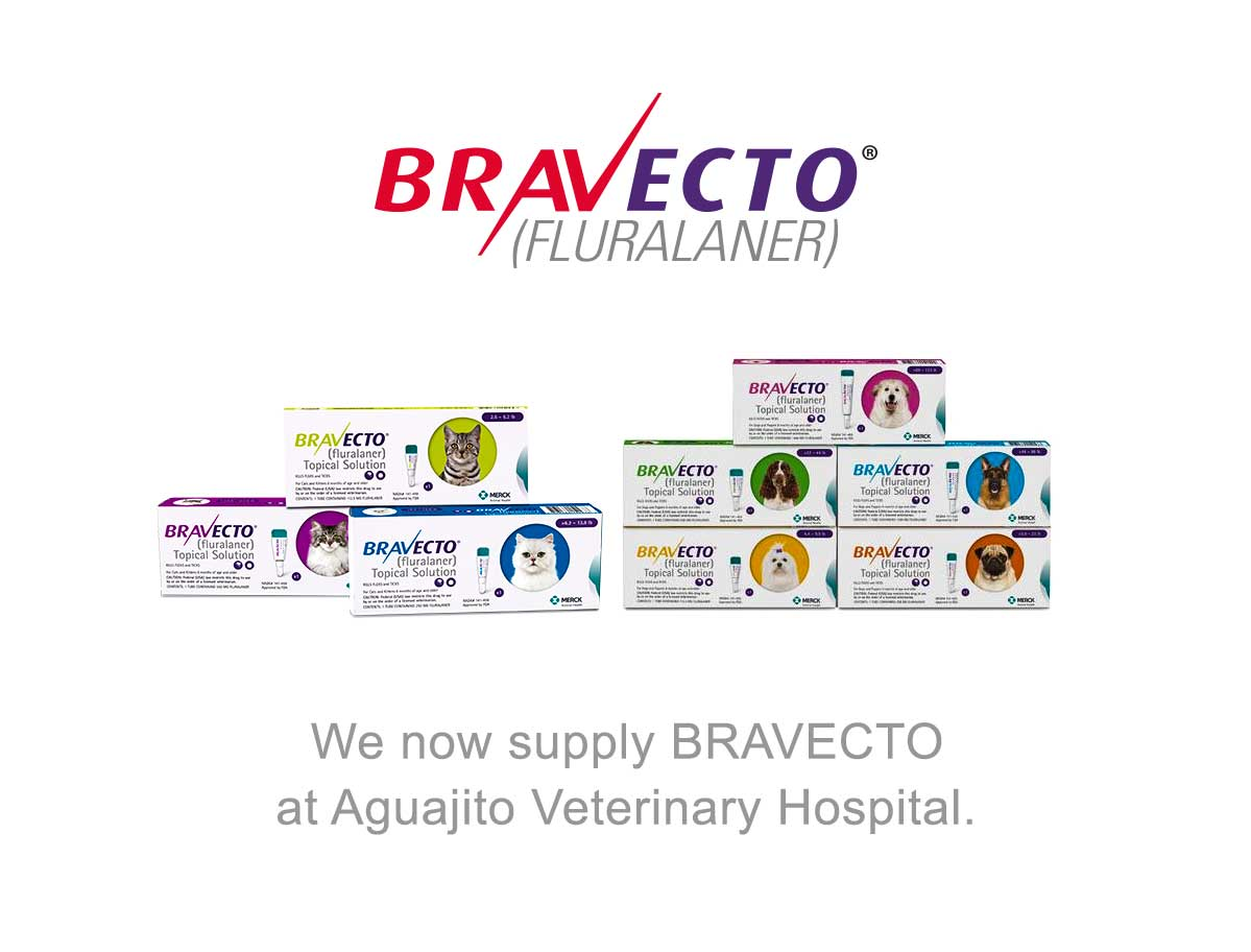 We now supply BRAVECTO at Aguajito Veterinary Hospital